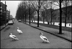 Book of the Week: <i&gt;Amsterdam: The Sixties</i&gt;